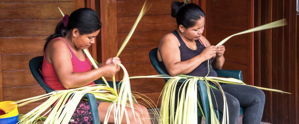 Women from Yamino community working with bombonaje plant