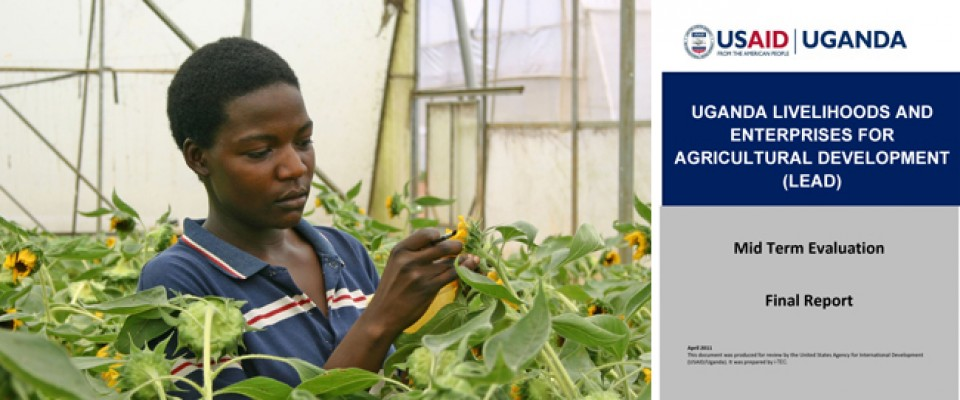 Uganda Livelihoods and Enterprises for Agricultural Development (LEAD) - Mid Term Evaluation / Final Report