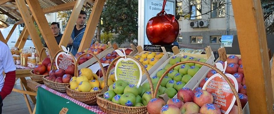 Promotion of Kosovo made apples