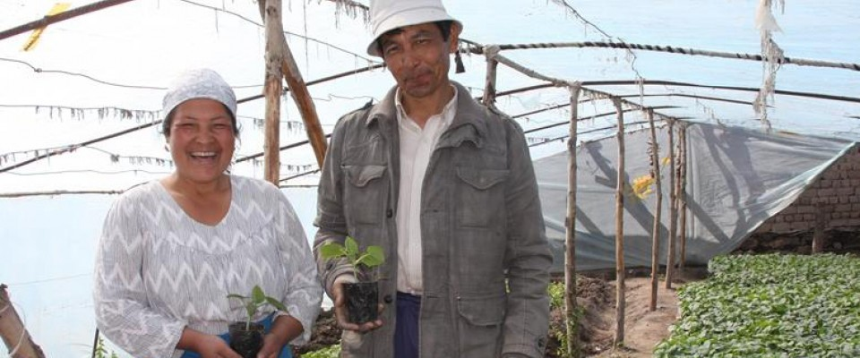 As part of Feed the Future, USAID promotes containerized seedlings to Khatlon farmers in Tajikistan