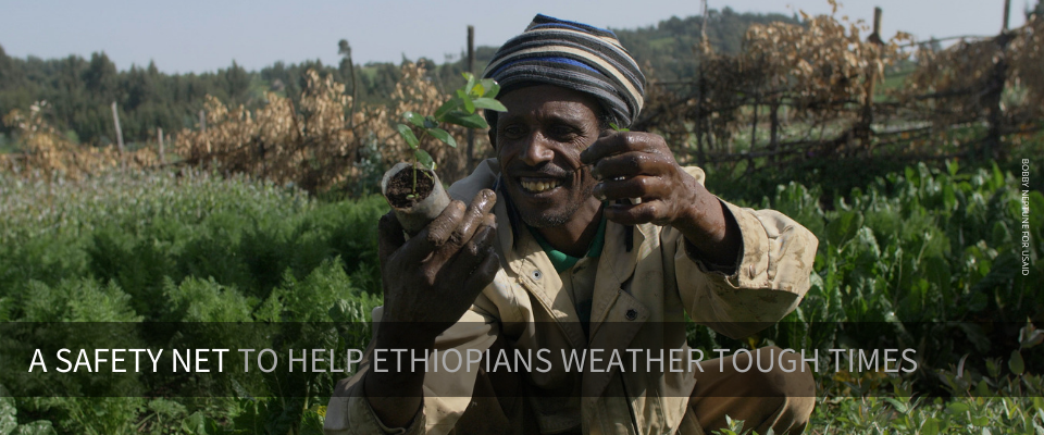 A national safety net program in Ethiopia is helping 8 million people weather tough times and adopt new productive livelihood activities for the future.