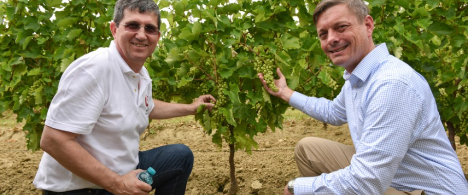 USAID's support for vineyards and wine producers has helped Moldova recover from the Russian Wine embargo, resulting in the development of premium bottled wines now selling in Europe, the US, and other non-CIS countries, winning over 270 awards so far.