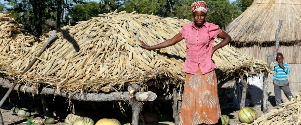 Keekaegile, an innovative farmer and intrepid mother of three who increased her yield of millet 12 times by using conservation a