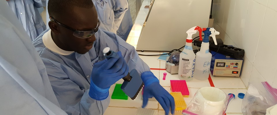 The Global Health Security Agenda program develops an integrated and global package of activities to help prevent avoidable epidemics in Guinea.