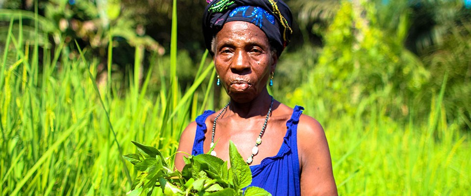 A woman in her farm in Forest Guinea.