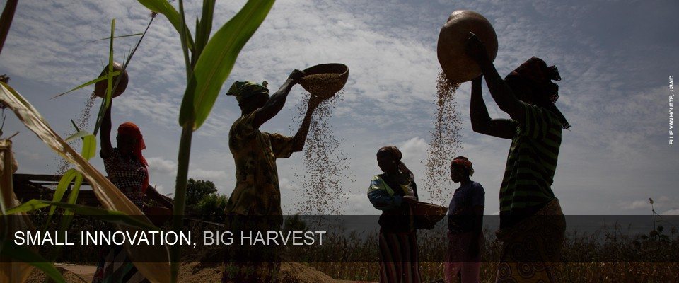 Small Innovation, Big Harvest. Photo: Ellie Van Houtte, USAID