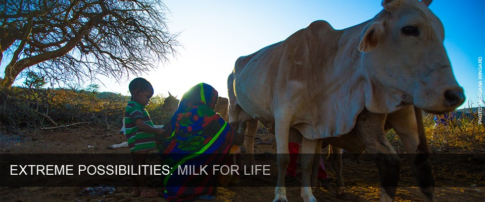 Extreme Possibilities - Milk for Life. Photo by Morgana Wingard