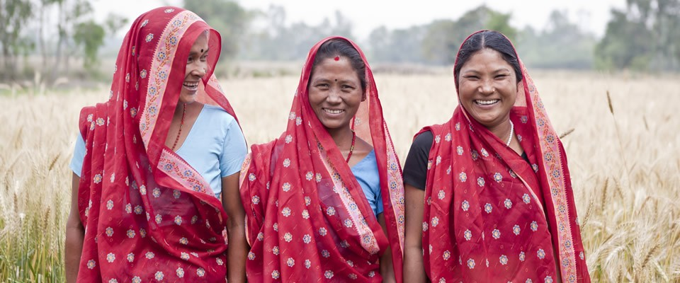 Three young women stand in a wheat field with identical red saris.