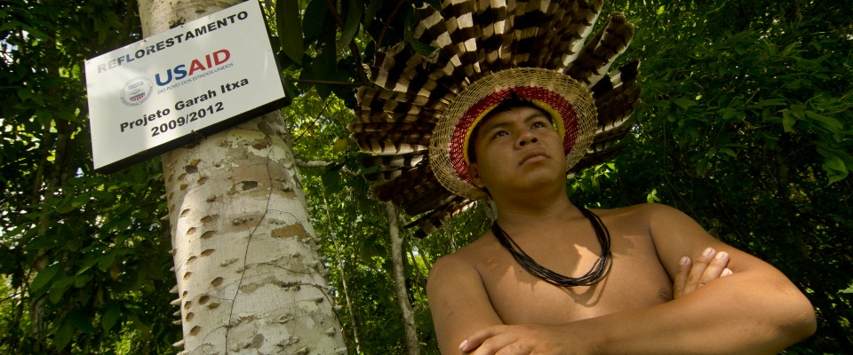 effect of deforestation on indigenous people The following is the established format for referencing this article: constantino, p a l 2016 deforestation and hunting effects on wildlife across amazonian indigenous lands.