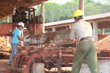 Workers at the Arbol Verde sawmill in the Petén region of Guatemala process lumber.