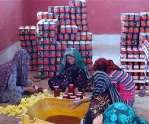 Women sticking labels on to jars of tomato paste