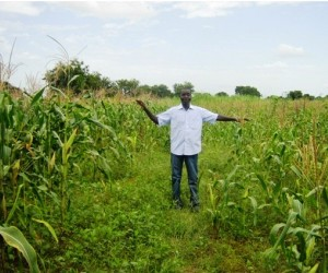 A man shows that crops grow high in an area that has used conservation farming, and low in an area that has not.