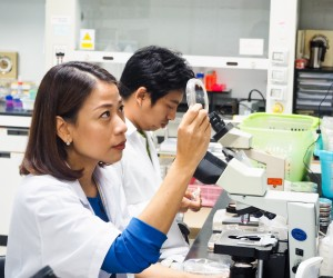 Thai Scientist Goes From Microscopes to Policymaking
