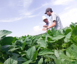 Kubanychbek Alymbekov (left) shows his soybean field to the buyer, Stephen Maier of Oasis Agro.