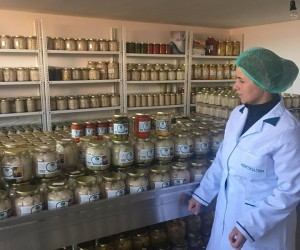Land Rights Bring Jobs, Business Growth to Women in Kosovo