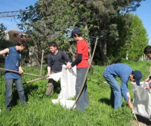 The local government and youth in Kaspi, Georgia, took action together to improve their municipality's environment, includ