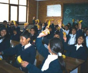 Bolivian primary school children hold up the bananas provided for their school lunches by USAID.