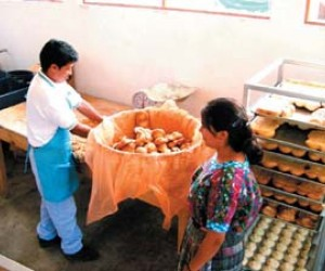 New bakeries bring work opportunities to rural Mayan women and improved nutrition for their families.