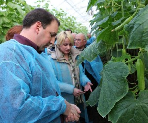 USAID's Economic Prosperity Initiative (EPI) Project helped Georgian vegetable growers to acquire necessary skills to operate gr