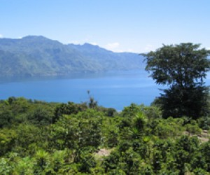 Chuwanimajuyu Municipal Park, Lake Atitlán, Guatemala was established with support from the local government and USAID.