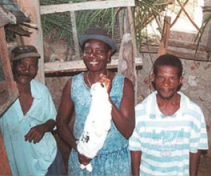Farmers from the village of Cajun in Haiti raise rabbits as part of USAID-sponsored Farmer to Farmer program.