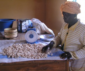 Kadiatou Ndao processes baobab fruit kernels into a powder for sale in the Senegalese capital, Dakar. A USAID-funded activity he