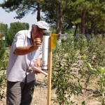 Farmers learn the intensive orchard method to increase crop yield and quality.