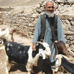 USAID's veterinary clinics helped this herdsman maintain a healthy flock of goats in Badakhshan.