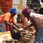 A retailer sells vitamin A-rich orange-fleshed sweet potatoes to a buyer at Kalerwe market near Kampala city.
