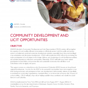 Community Development and Licit Opportunities (CDLO)