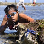 A young fisherman in Timor-Leste