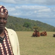 Lina Gudu purchased her cows with proceeds from a village savings and loan group.