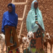 Nigerien women show off the goats they care for through habbanayé, a traditional livestock sharing practice.