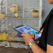 USAID and partner, Freeland, launch Wildscan App in Jakarta.