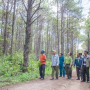 The two new projects will help conserve over 950,000 hectares of forested area across 12 provinces in Vietnam.