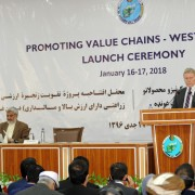 USAID Supports Value Chains in Western Region of Afghanistan