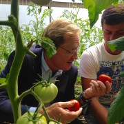 Giorgi Shavadze Shows Mission Director Ball His Greenhouses along the ABL