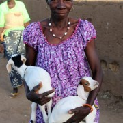 A Burkinabe woman shows off her lambs
