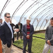 Visit to a seedlings farm in Southern Kyrgyzstan, a beneficiary of USAID Agro Horison Project