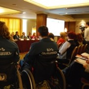 National conference to discuss the Model of Inclusive Vocational Education and Employment for People with Disabilities