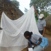 Villagers in Ebonyi State inspect an ITN for holes.  In 2020, USAID distributed 7.1 million of the nets in all 36 Nigerian states and the Federal Capital Territory
