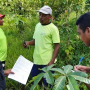 Achieving the Rainforest Alliance Certification requires compliance with numerous standards