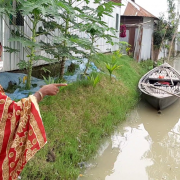 Shukhi Begum, Islampur, Jamalpur District, worked with USAID's SHOUHARDO III project last year, to raise her home on an earthen plinth, up above flood levels.