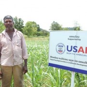 USAID supports dairy farmers in rural Sri Lanka