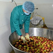 USAID's support included upgrade of the facilities, installation of equipment, adoption of international quality control (HACCP) system and other technical assistance.