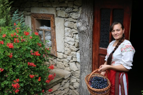 "Falaga at the ""Eco-resort Butuceni"" touristic center with a basket of locally grown plums and grapes."