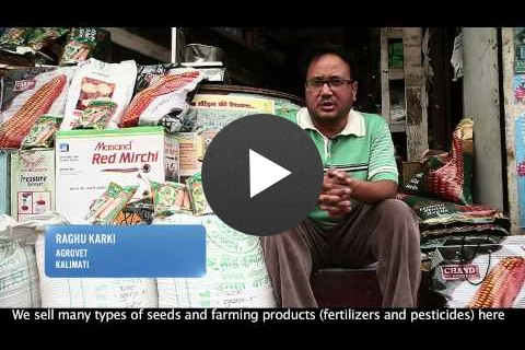 USAID NEAT: Hybrid Seed Production in Nepal