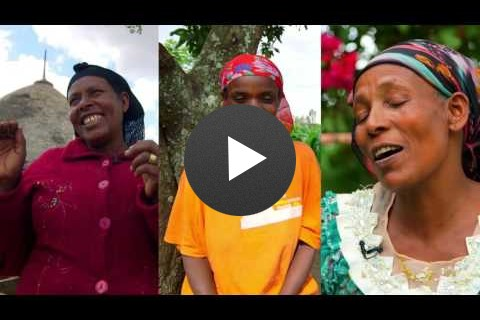 Three Ethiopian Women Farm Sweet Potatoes with One Purpose: Saving Lives