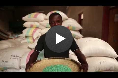 Feed the Future Southern Africa Seed Trade Project - by USAID