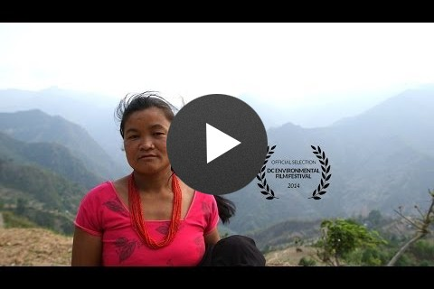 Scaling the Mountain: Protecting Forests for Families in Nepal